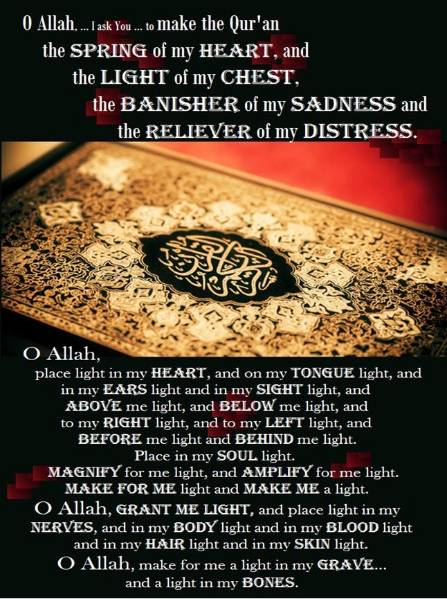 quran spring of heart