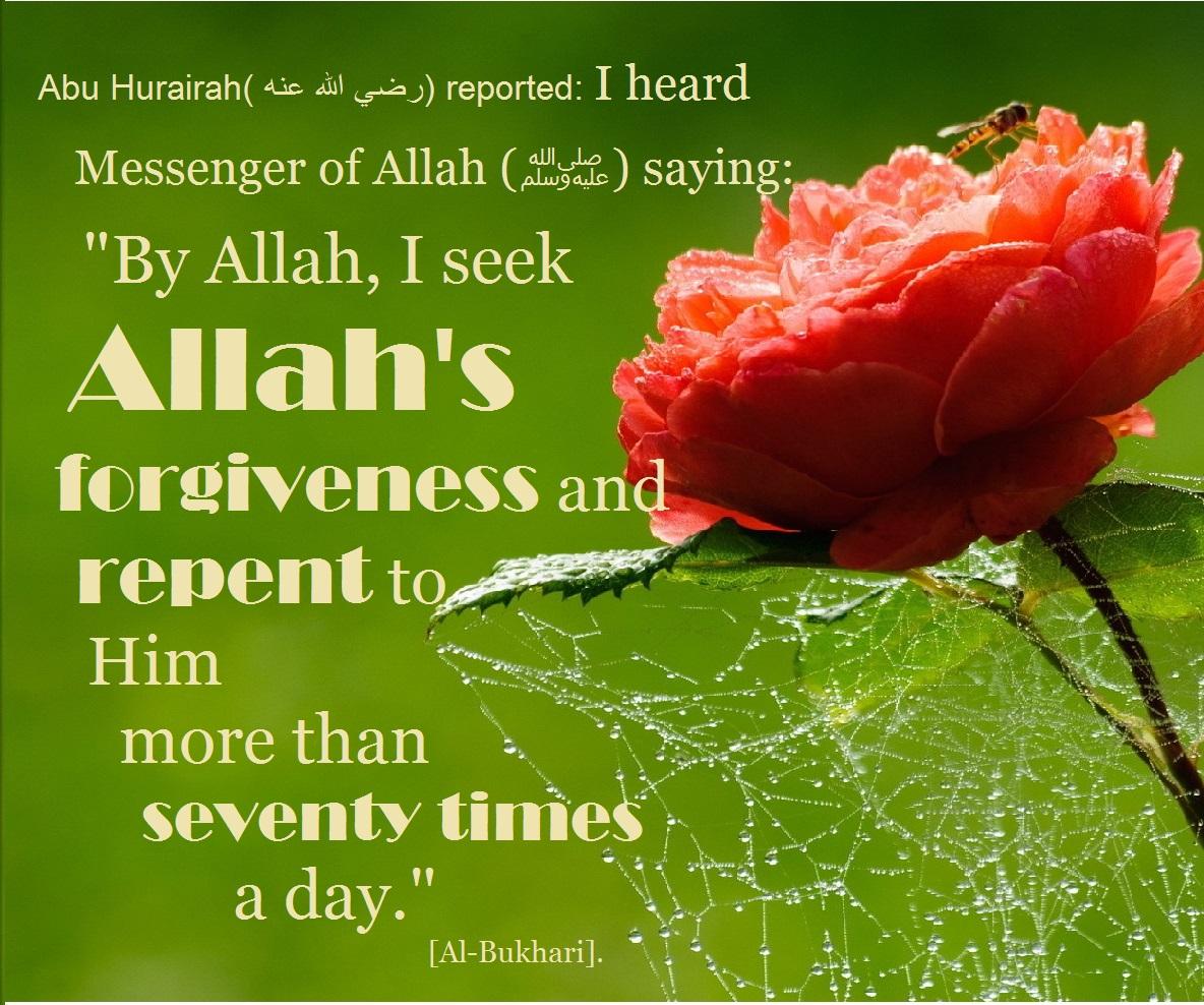 rose forgiveness 70 times