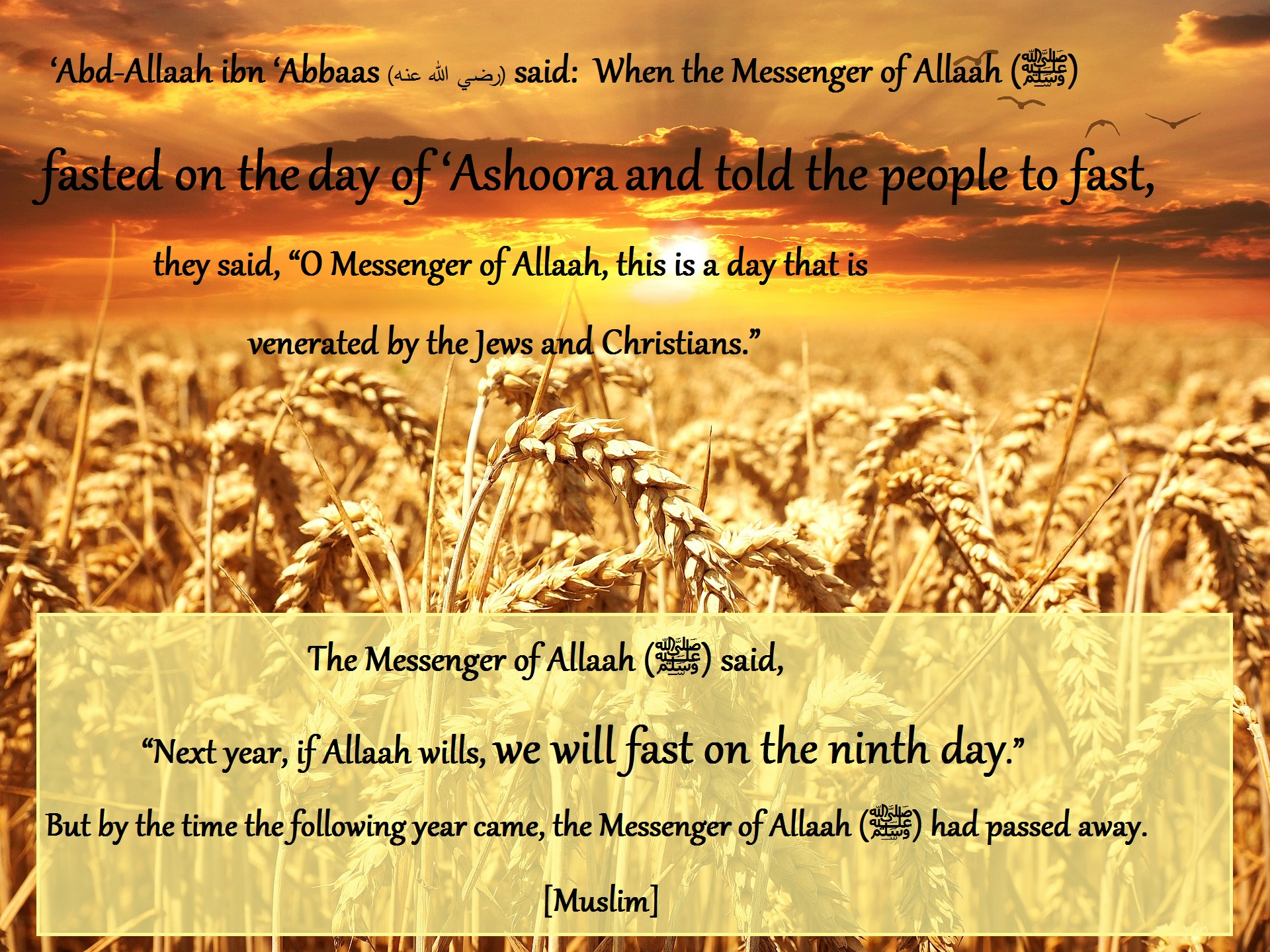 9th-of-muharram