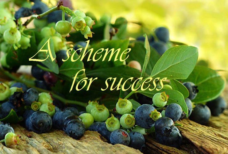 A Scheme for Success