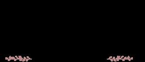 Zainy