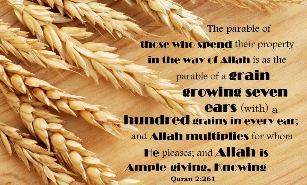 Allah multiplies seven hundred baqrah 261