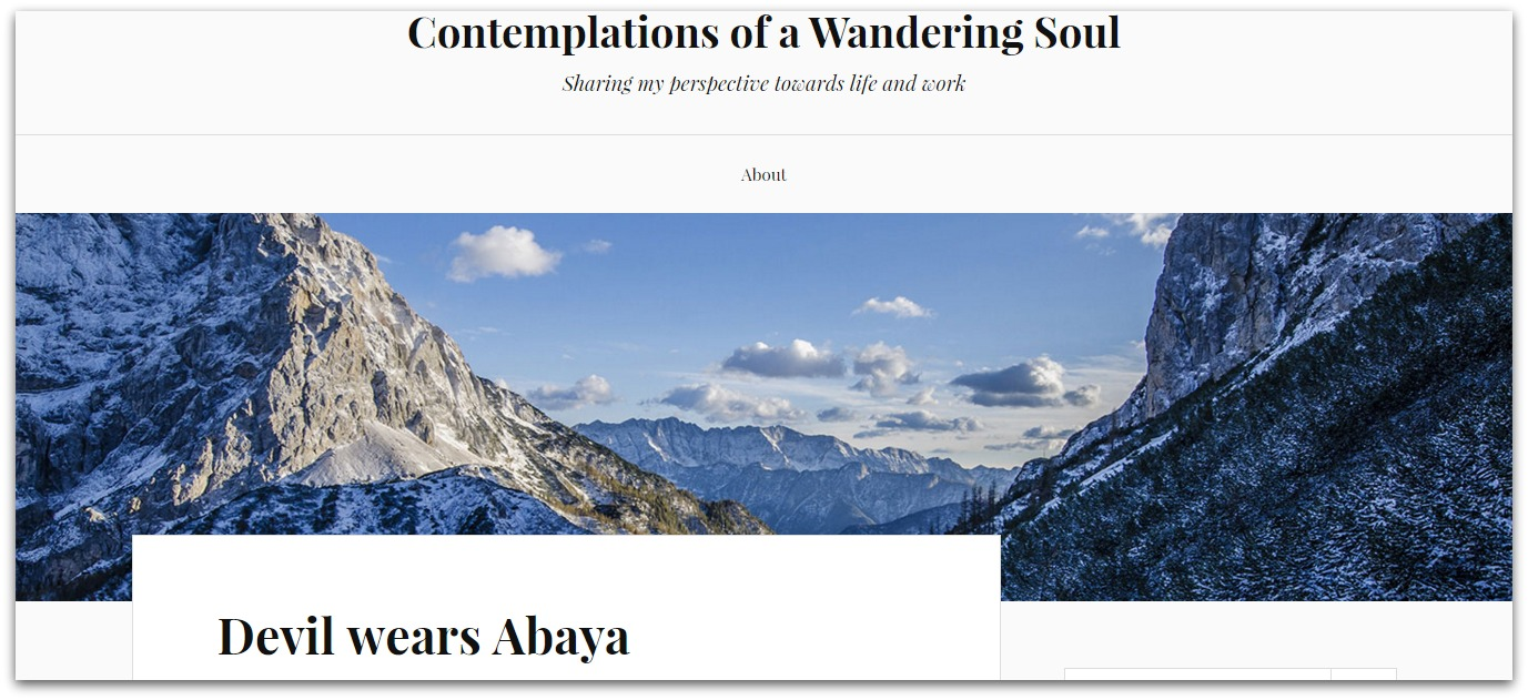 Contemplations of a wandering soul